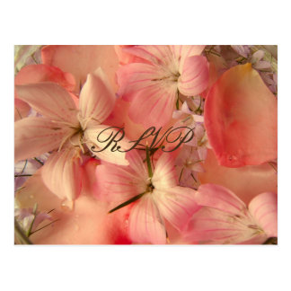 RSVP, Romantic Pink Flowers Postcard