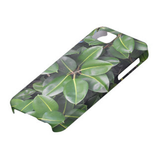 Rubber Tree Closeup iPhone 5 Case