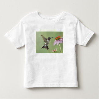 Ruby-throated Hummingbird, Archilochus 3 T Shirt