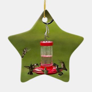 Ruby Throated Hummingbird Feeding Frenzy Christmas Ornament