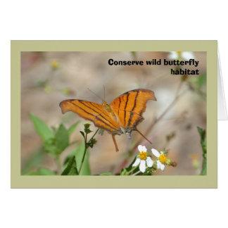 Ruddy Daggerwing butterfly, blank greeting card
