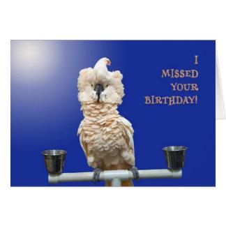 Ruffled Feathers Card