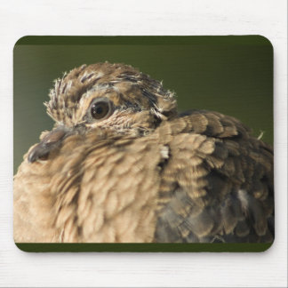 Ruffled Feathers Mouse Pad