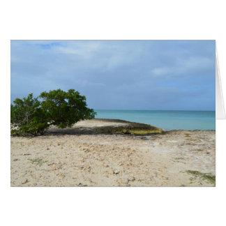 Rugged Aruba Card