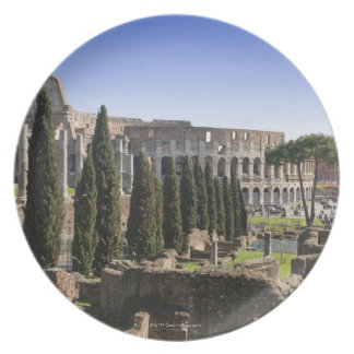 Ruins of the Roman Colosseum from Il Palatino, Plate