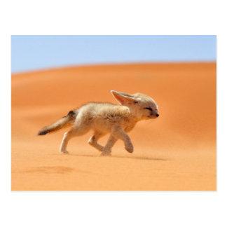 Running Fennec Fox Postcard