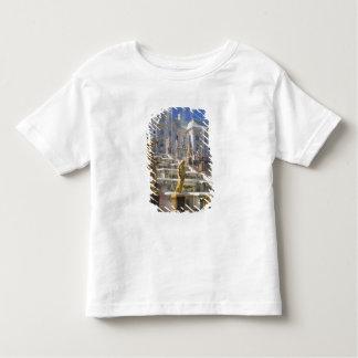 Russia, St. Petersburg, The Great Cascade, Toddler T-Shirt
