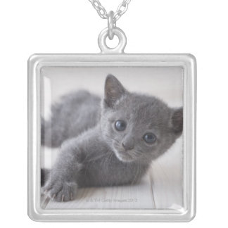 Russian Blue Kitten Silver Plated Necklace