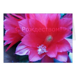 Russian Merry Christmas Card, Christmas Cactus Greeting Card