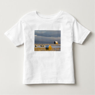 Rustic barn and hay bales after a fresh snow 3 toddler T-Shirt