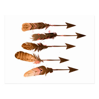 Rustic Bohemian Tribal Feather Arrows Postcard