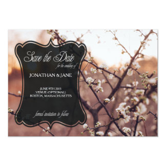 Rustic Spring White Blossom Branches Card