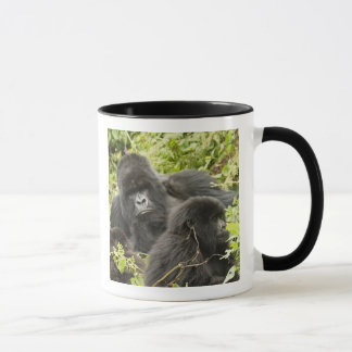Rwanda, Volcanoes National Park. Mountain Mug