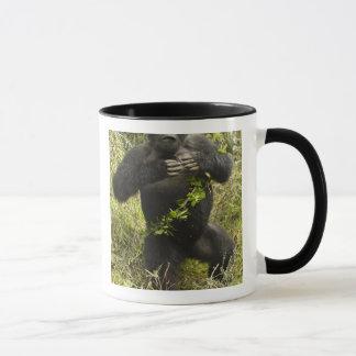 Rwanda, Volcanoes National Park. Mountain Mug
