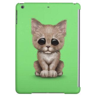 Sad Cute Beige Kitten Cat on Green
