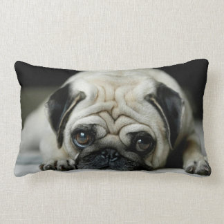 Sad pug - dog lying down - dog look - cute puppies lumbar cushion