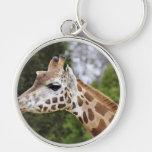 Safari Africa Mod Chic Classy  Destiny Giraffe Key Chain