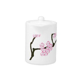 sakura bloom white eye bird, tony fernandes