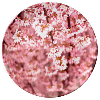 Sakura Cherry Blossom Plate