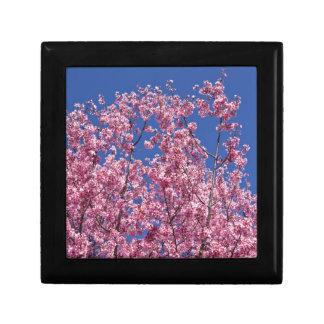 Sakura Cherry Blossoms Into The Blue Gift Box