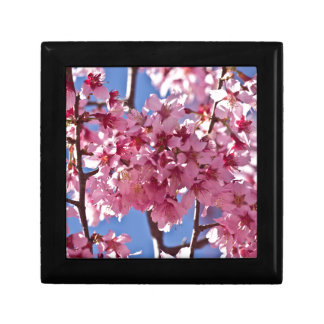 Sakura Cherry Blossoms Red Stars Gift Box