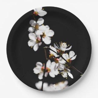 Sakura flowers paper plate