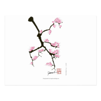 sakura with pink birds by tony fernandes postcard