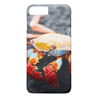 Sally lightfoot crab on a black lava rock iPhone 8 plus/7 plus case