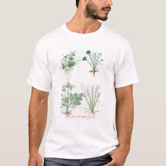 Salt Bush and Anthora Absinthium and Cardamom T-Shirt
