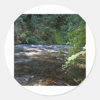 Salt Creek, Oregon Classic Round Sticker