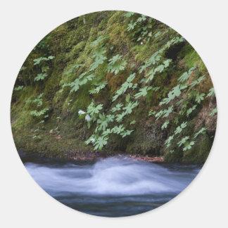 Salt Creek, Oregon Round Sticker