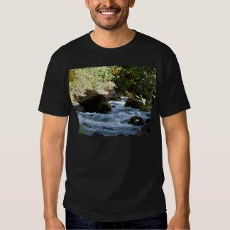 Salt Creek, Oregon Tee Shirts