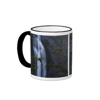 Salt Creek Waterfall, Oregon Ringer Mug