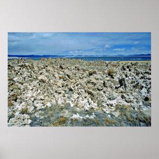 Salt Deposits Beside Lake Poster