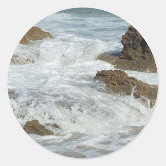 SALT FOAM REEF CLASSIC ROUND STICKER