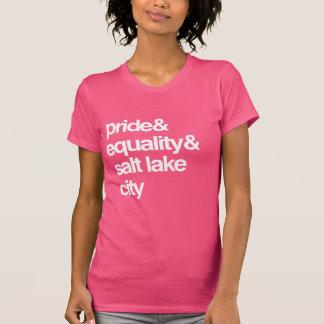 SALT LAKE CITY EQUALITY AND PRIDE -- .png Shirts
