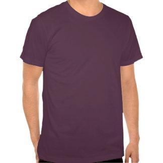 SALT LAKE CITY GAY PRIDE -- .png Shirt