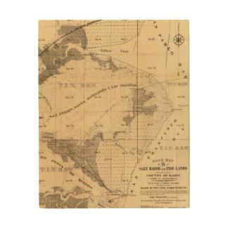 Salt marsh and tide lands wood print