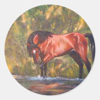 Salt River Wild Stallion Tango Classic Round Sticker