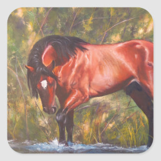 Salt River Wild Stallion Tango Square Sticker