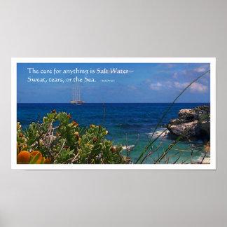 Salt Water Cure Island Poster