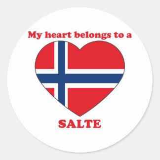 Salte Stickers