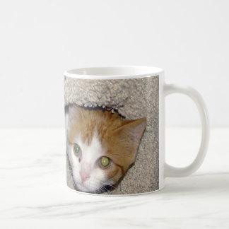 Salty Coffee Mugs