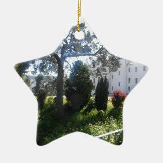 sam_0585_0146.jpg ceramic star decoration