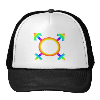 same-sex marriage cap