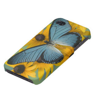 Sammamish Washington Photograph of Butterfly 22 iPhone 4/4S Case