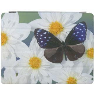 Sammamish Washington Photograph of Butterfly 33 iPad Cover