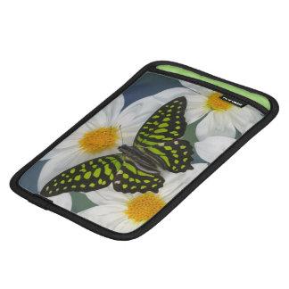 Sammamish Washington Photograph of Butterfly 36 iPad Mini Sleeve