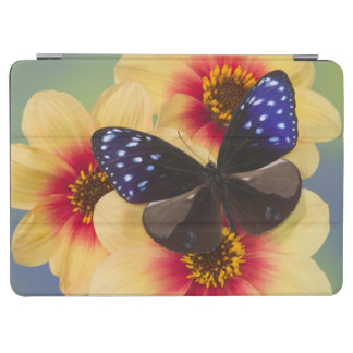 Sammamish Washington Photograph of Butterfly 40 iPad Air Cover