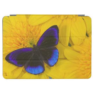 Sammamish Washington Photograph of Butterfly 41 iPad Air Cover